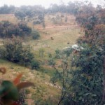 Goldspeck Gully Rd 1976
