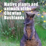 Your guide to 224 native plants and animals of the Bushlands